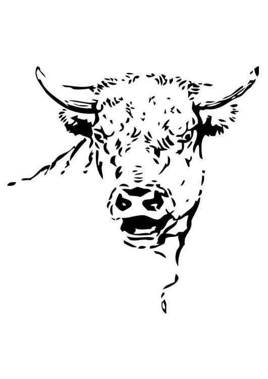 coloriage taureau imprimer