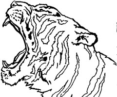 Coloriage A Imprimer Tigre A Dent De Sabre