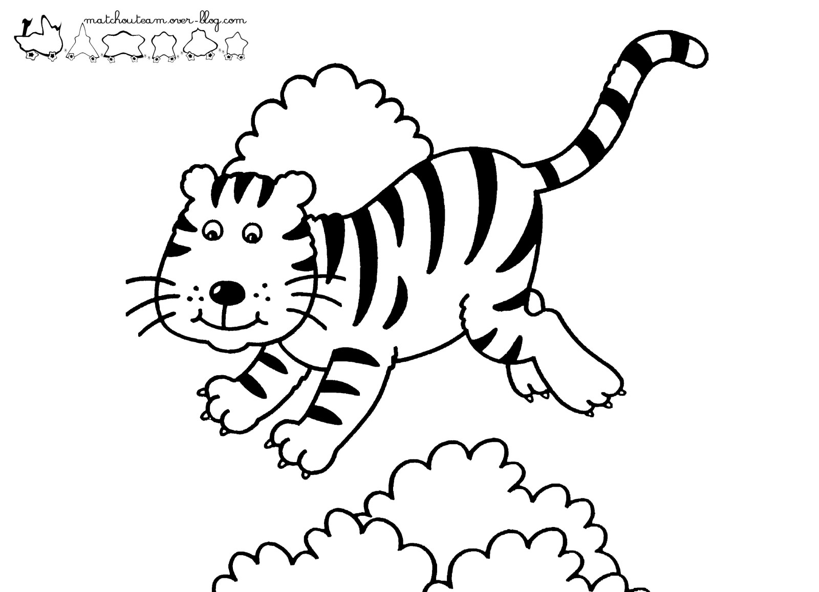 Coloriage de tigre qui chasse - Photo de tigre a imprimer ...