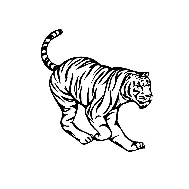 coloriage tigre maternelle