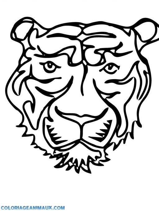 dessin à colorier tigre bébé