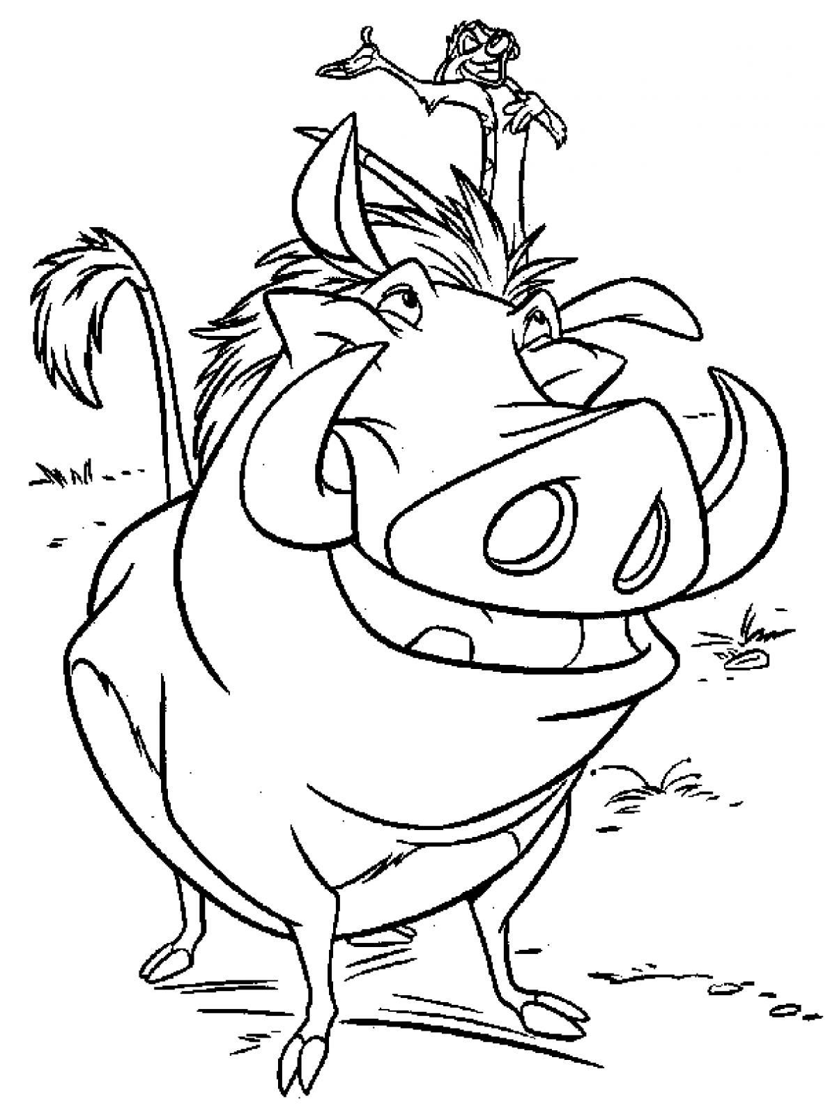 Adult Best Timon And Pumbaa Coloring Pages Images Dashah Beauty