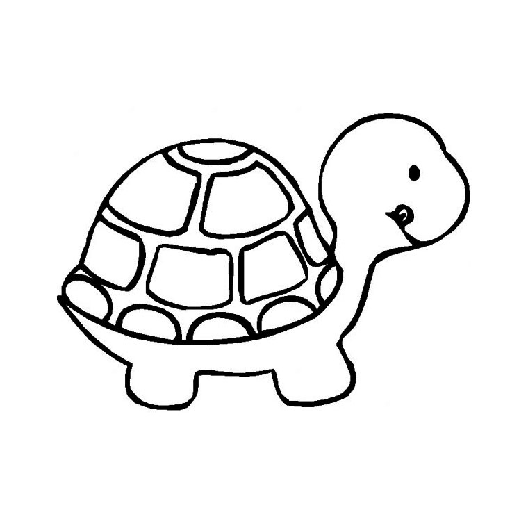 coloriage tortue de mer