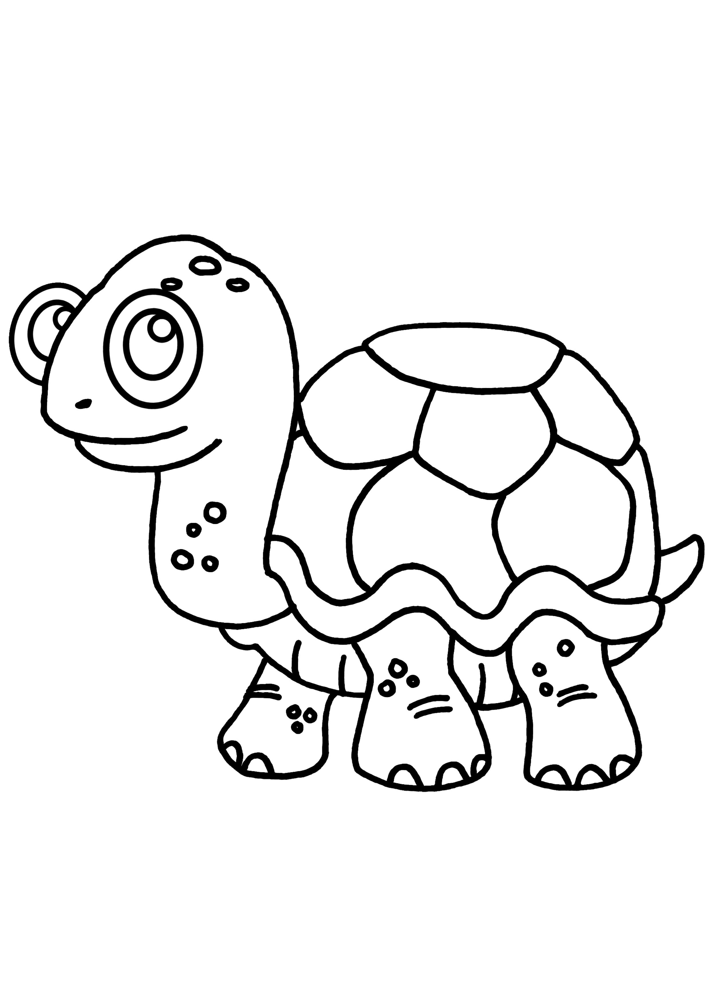 coloriage tortue en ligne