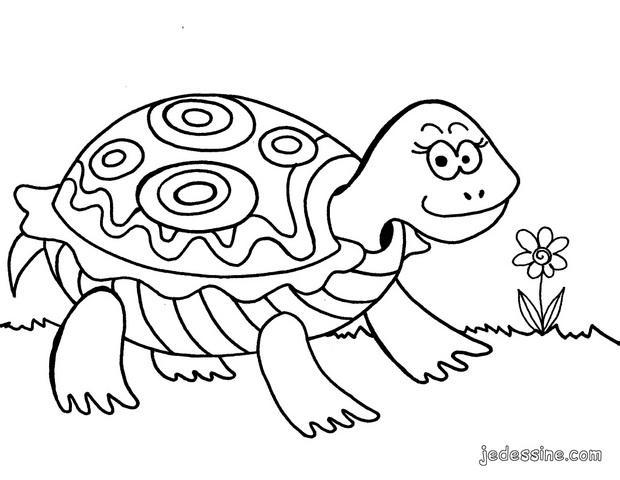 dessin tortue de mer a imprimer