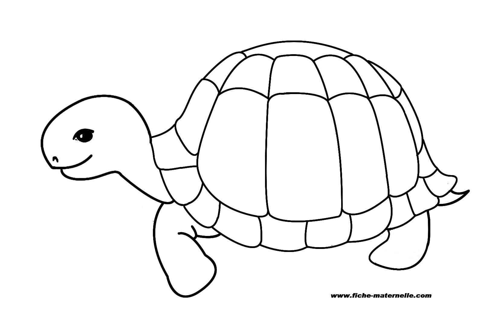 dessin  colorier masque tortue Voir le dessin dessin gratuit samy tortue