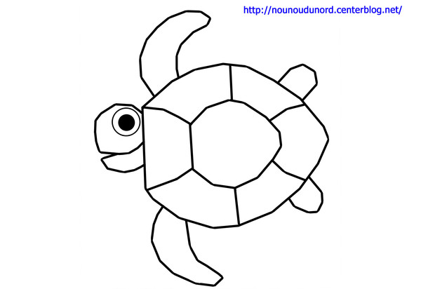 Dessin la tortue - Dessin d une tortue ...