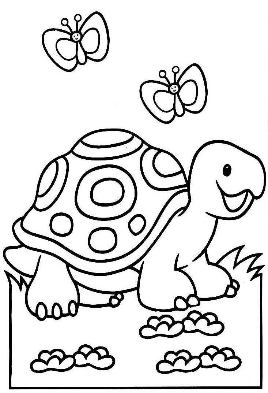 Coloriage dessiner li vre et tortue - Dessin d une tortue ...