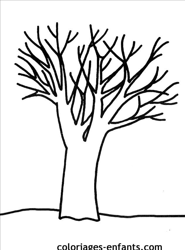 20 dessins de coloriage tronc d 39 arbre imprimer imprimer - Arbre en automne dessin ...