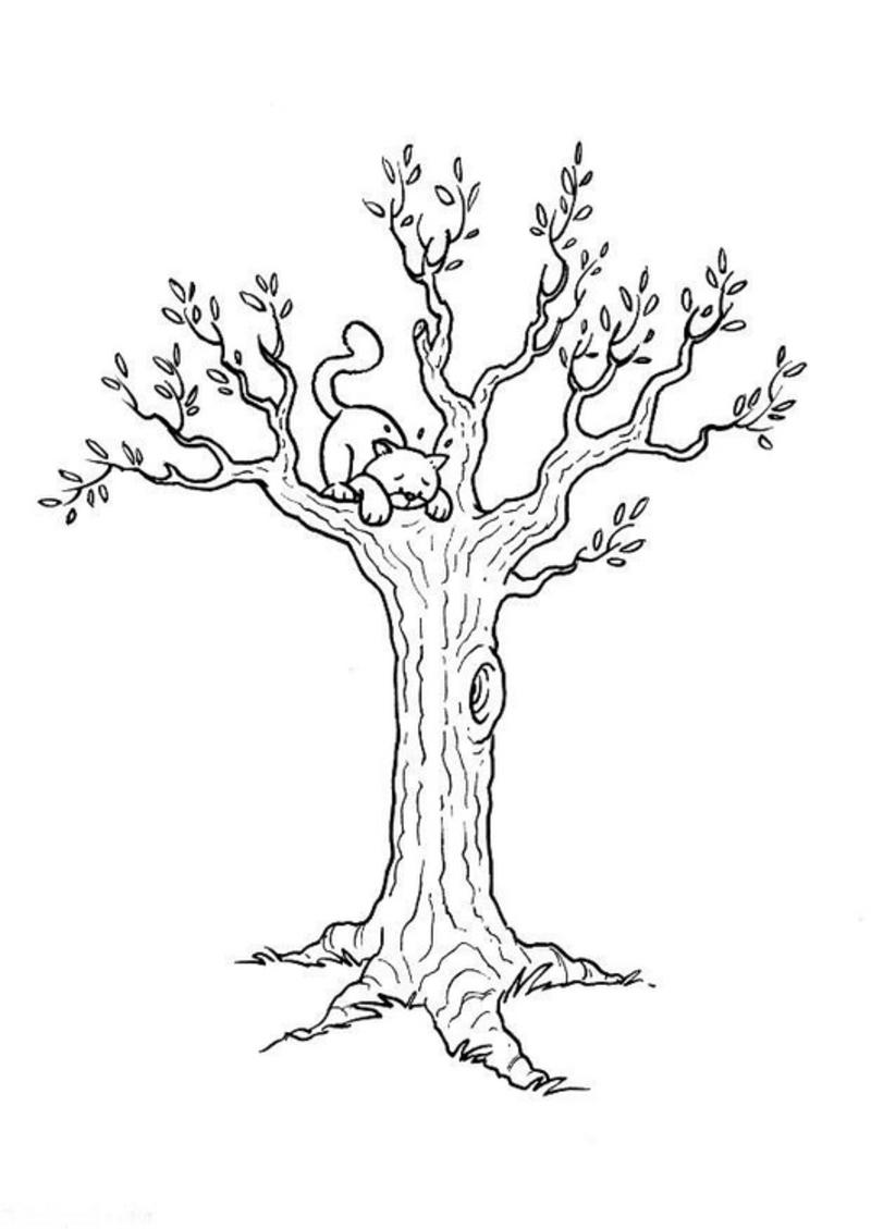 20 dessins de coloriage tronc d 39 arbre imprimer imprimer. Black Bedroom Furniture Sets. Home Design Ideas