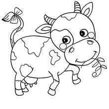 Dessin ã Colorier La Vache Qui Rit