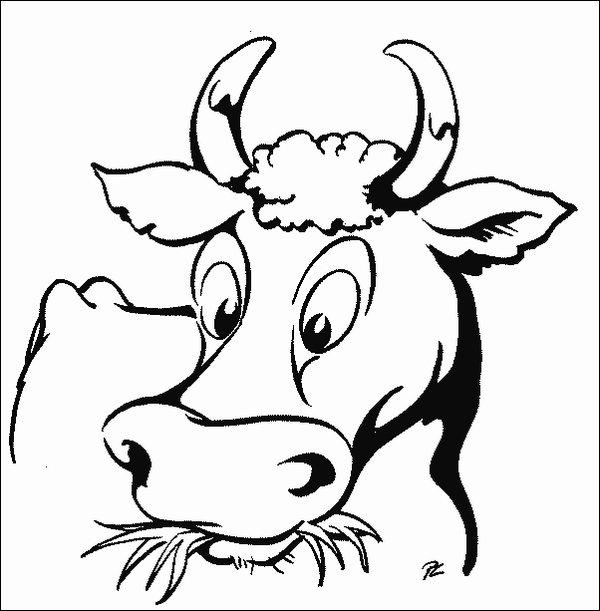 Coloriage De Vache A Imprimer Gratuit