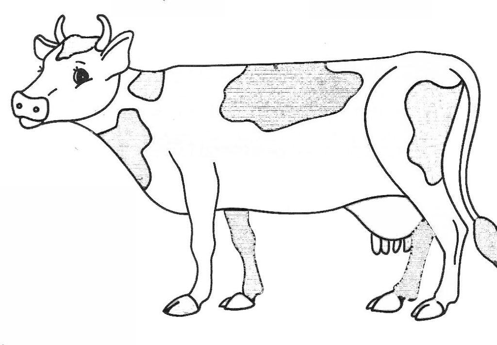 coloriage à dessiner de vache et de tracteur