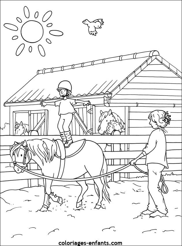 dessin cheval voltige