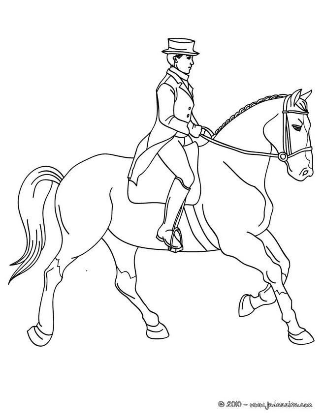 20 dessins de coloriage voltige cheval imprimer - Coloriage equitation ...