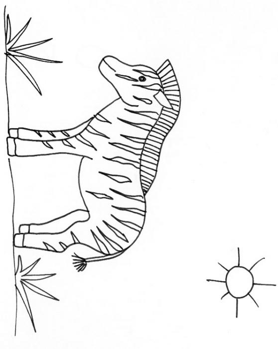 coloriage à dessiner de zebre a imprimer