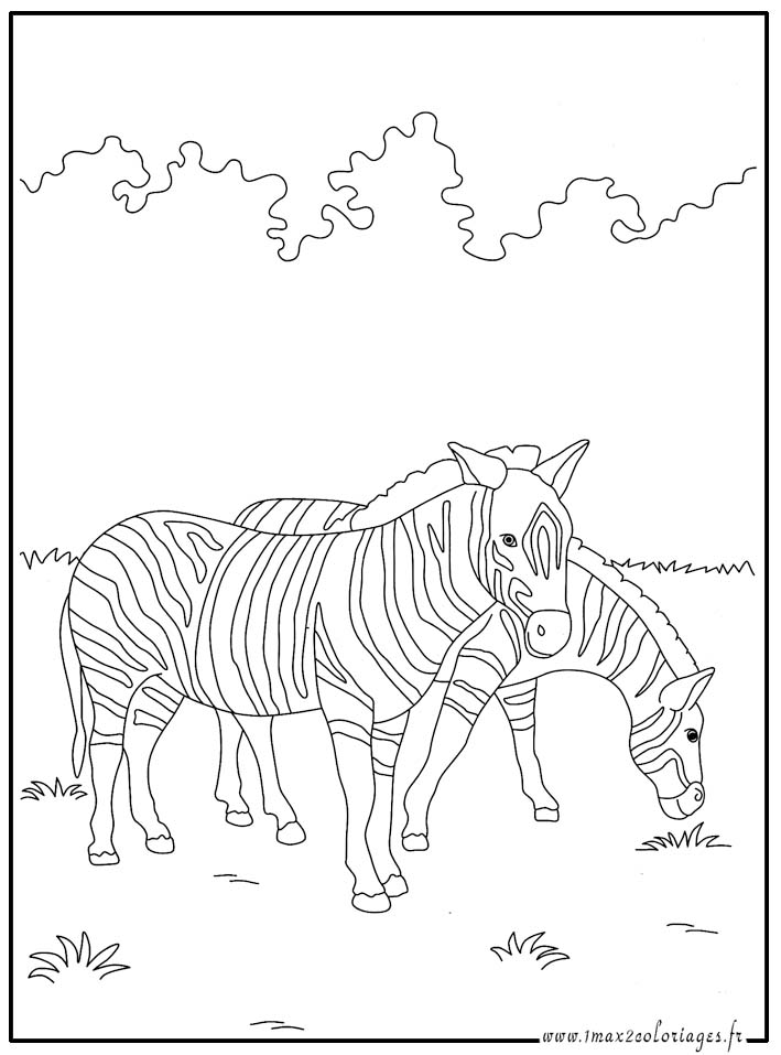 Dessin colorier masque de zebre - Zebre a dessiner ...