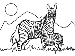 coloriage zebre à imprimer