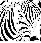 coloriage à dessiner de zèbre en ligne