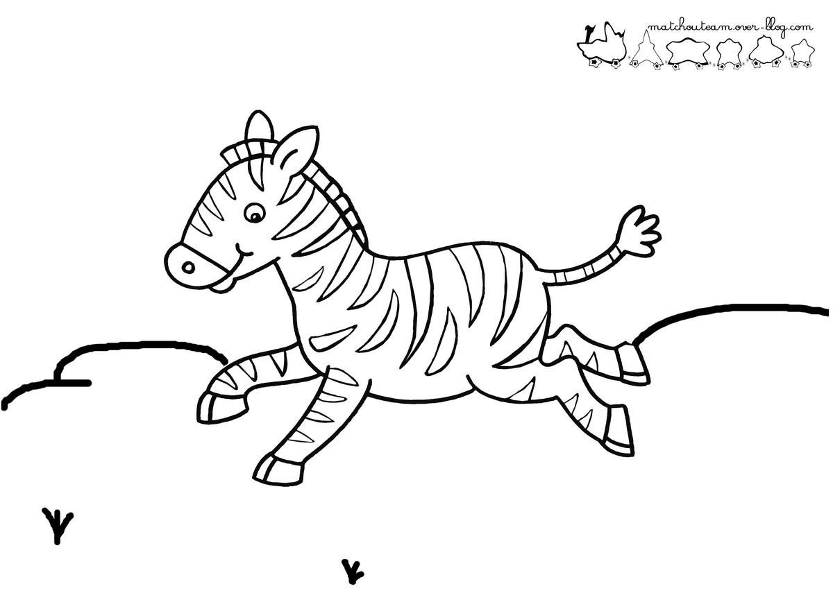 dessin à colorier zebre gratuit