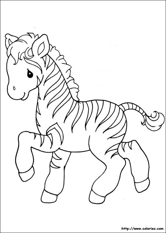 coloriage animaux zebre