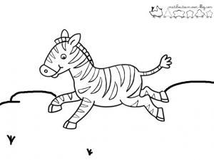 dessin animaux zebre