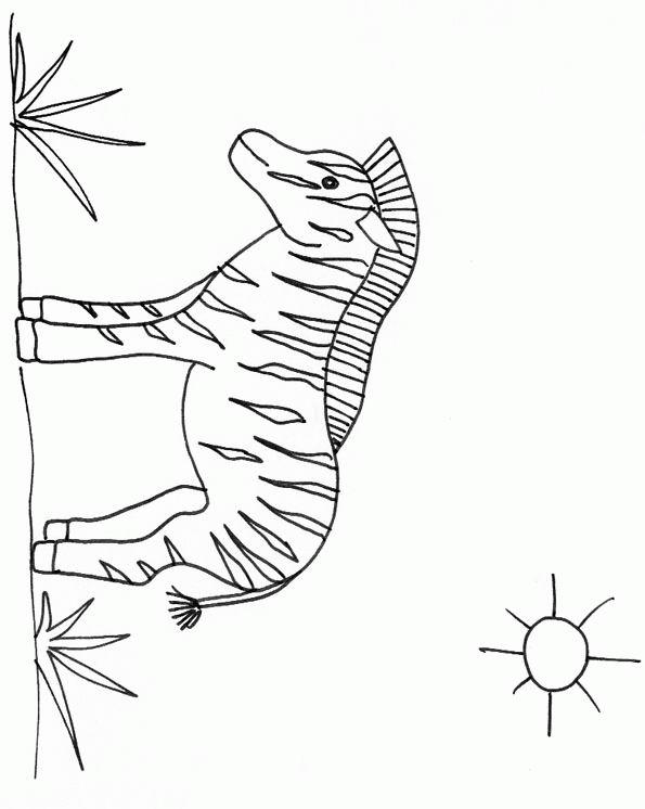 coloriage zebre sans rayure