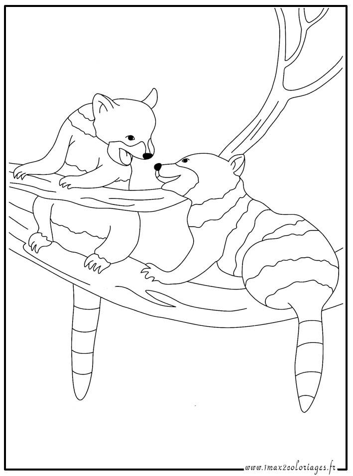 dessin zoo maternelle