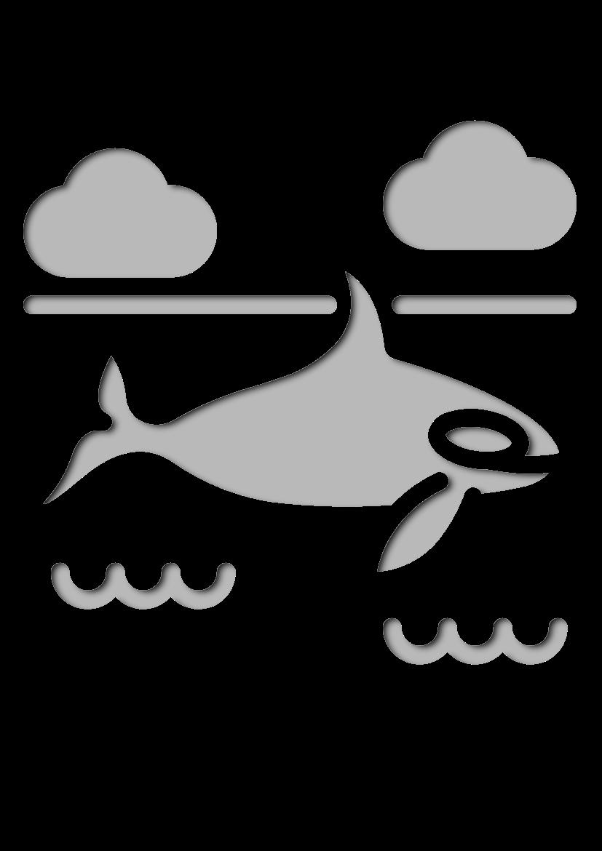 Pochoir Arctique Orca