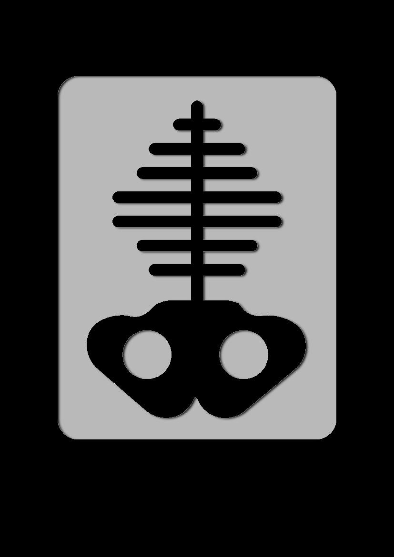 Pochoir Medical Rayon X