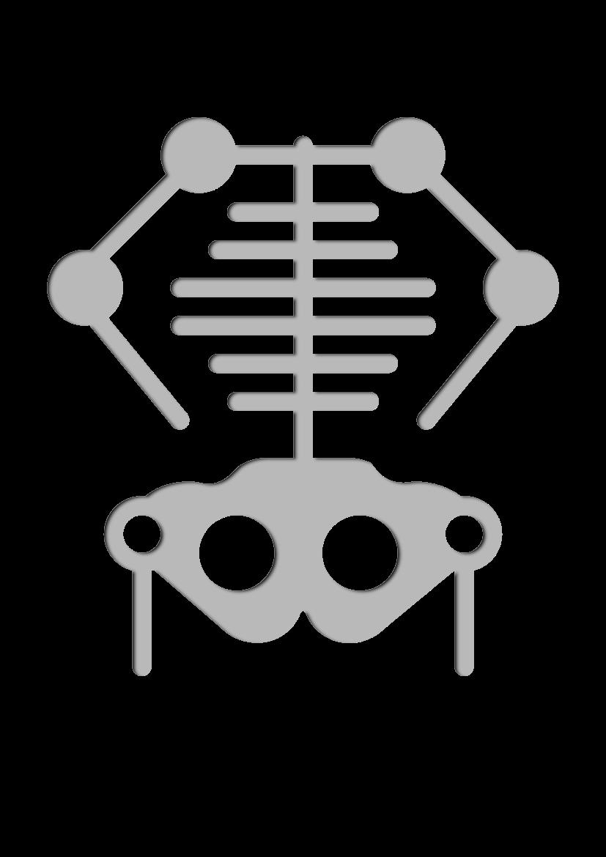 Pochoir Medical Squelette
