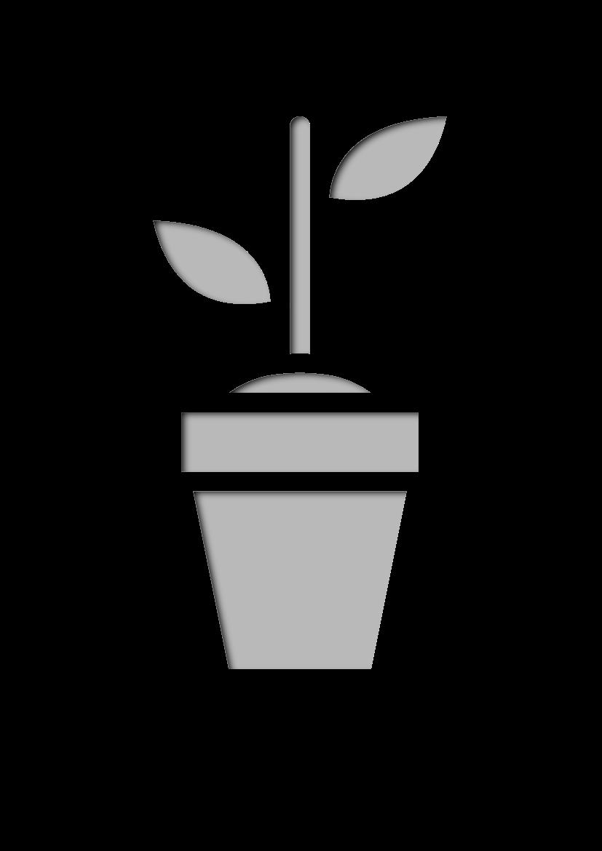 Pochoir Nature Plante