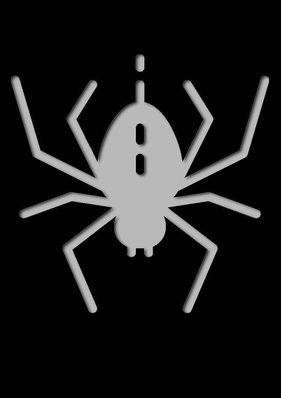 Pochoir Nature Araignée