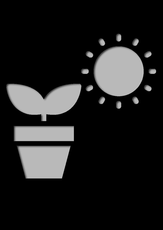 Pochoir Nature Pot de plante